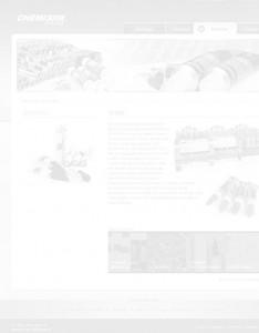 uslugi-chemistik-strona-www-front